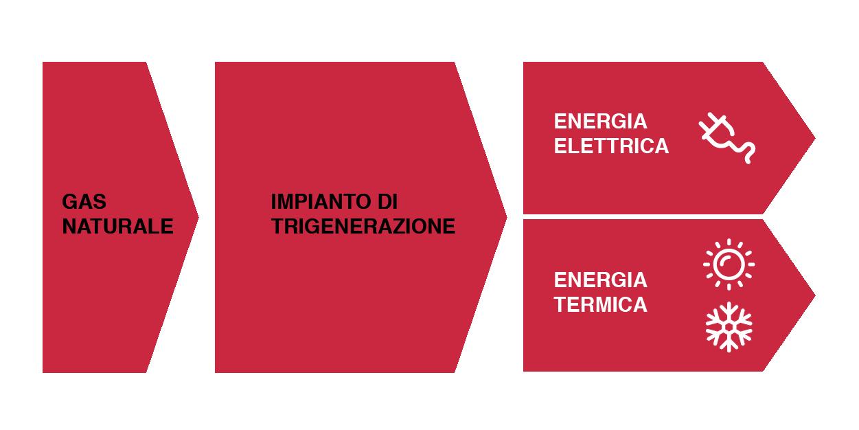 schema-trigenerazione